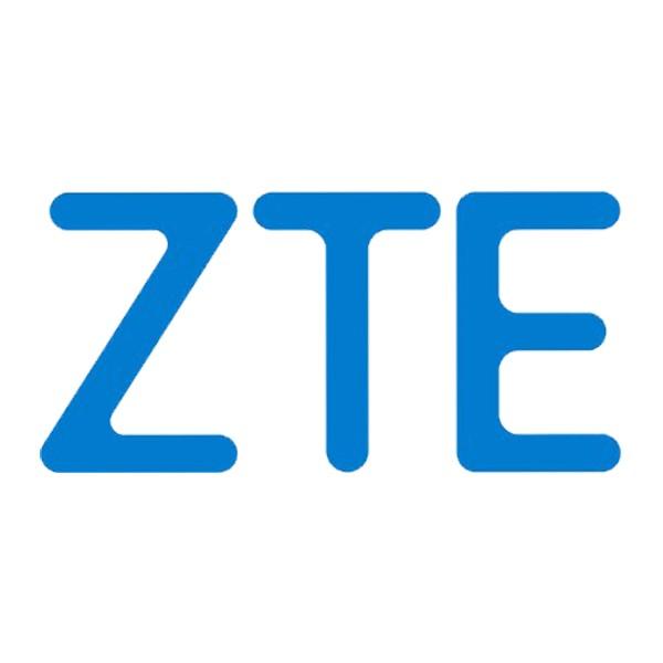 ZTE FTTH GPON C320 AC Netzteil